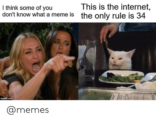A Meme: This is the internet,  the only rule is 34  I think some of you  don't know what a meme is  imgflip.com @memes