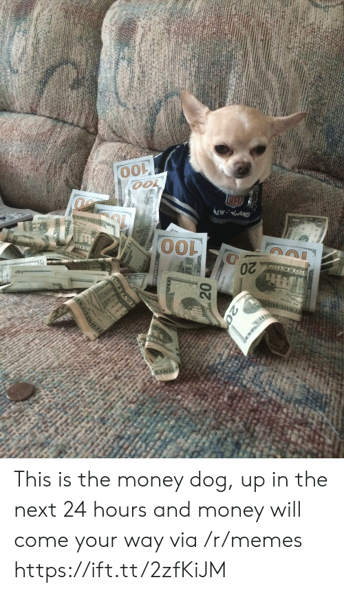 Memes, Money, and Dog: This is the money dog, up in the next 24 hours and money will come your way via /r/memes https://ift.tt/2zfKiJM