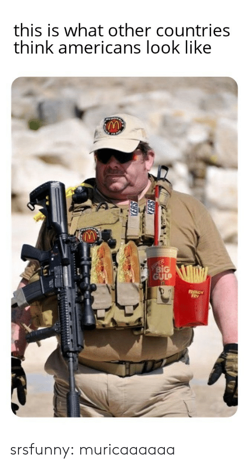 fry: this is what other countries  think americans look like  ER  BiG  GULP  FRENCH  FRY srsfunny:  muricaaaaaa