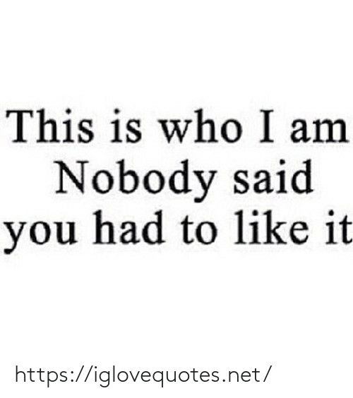 nobody: This is who I am  Nobody said  you had to like it https://iglovequotes.net/