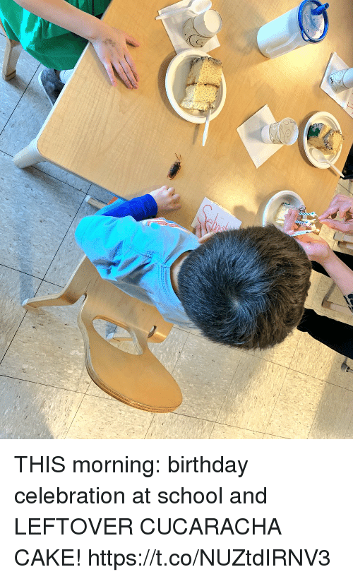 Birthday, Memes, and School: THIS morning: birthday celebration at school and LEFTOVER CUCARACHA CAKE! https://t.co/NUZtdIRNV3