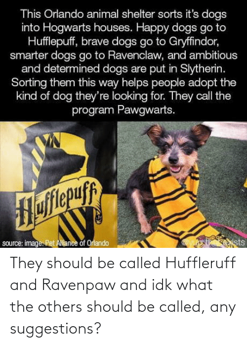 program: This Orlando animal shelter sorts it's dogs  into Hogwarts houses. Happy dogs go to  Hufflepuff, brave dogs go to Gryffindor,  smarter dogs go to Ravenclaw, and ambitious  and determined dogs are put in Slytherin.  Sorting them this way helps people adopt the  kind of dog they're looking for. They call the  program Pawgwarts.  Hofitepuf  source: image. Pet Allance of Orlando  ists They should be called Huffleruff and Ravenpaw and idk what the others should be called, any suggestions?