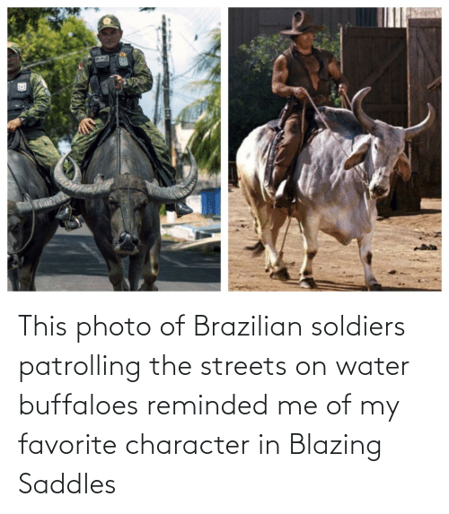 Soldiers: This photo of Brazilian soldiers patrolling the streets on water buffaloes reminded me of my favorite character in Blazing Saddles