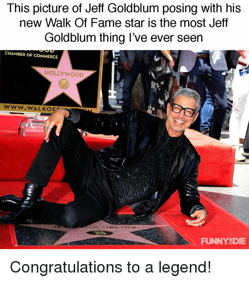 Dank, Congratulations, and Star: This picture of Jeff Goldblum posing with his  new Walk Of Fame star is the most Jeff  Goldblum thing l've ever seern  CHAMBER OF COMMERCE  HOLLYWOOD  www.WALKOE  FUNNYSDIE Congratulations to a legend!