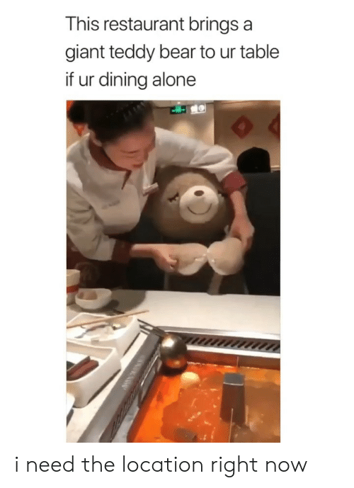 I Need The: This restaurant brings a  giant teddy bear to ur table  if ur dining alone i need the location right now