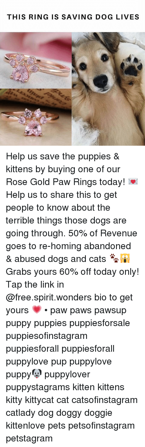 Cats, Dogs, and Memes: THIS RING IS SAVING DOG LIVES Help us save the puppies & kittens by buying one of our Rose Gold Paw Rings today! 💌 Help us to share this to get people to know about the terrible things those dogs are going through. 50% of Revenue goes to re-homing abandoned & abused dogs and cats 🐾🙀 Grabs yours 60% off today only! Tap the link in @free.spirit.wonders bio to get yours 💗 • paw paws pawsup puppy puppies puppiesforsale puppiesofinstagram puppiesforall puppiesforall puppylove pup puppylove puppy🐶 puppylover puppystagrams kitten kittens kitty kittycat cat catsofinstagram catlady dog doggy doggie kittenlove pets petsofinstagram petstagram