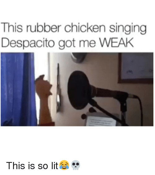 rubber chicken: This rubber chicken singing  Despacito got me WEAH This is so lit😂💀