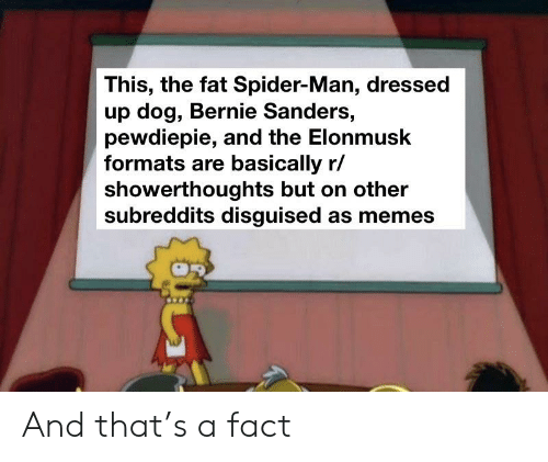 Bernie Sanders, Memes, and Spider: This, the fat Spider-Man, dressed  up dog, Bernie Sanders,  pewdiepie, and the Elonmusk  formats are basically r/  showerthoughts but on other  subreddits disguised as memes And that's a fact
