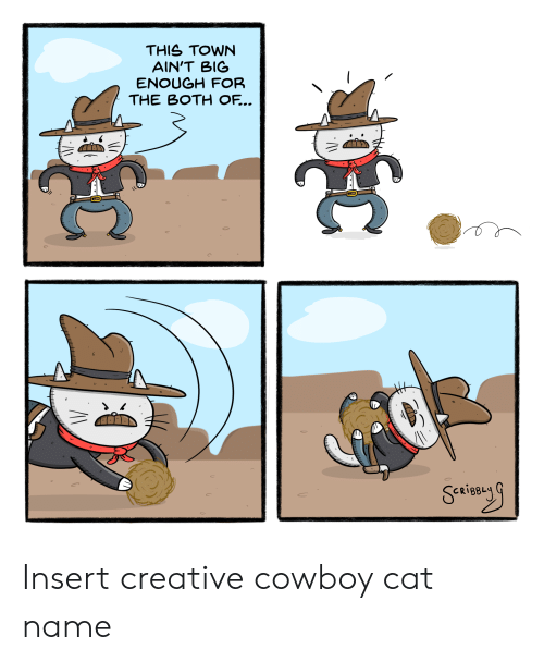 Cowboy, Cat, and Big: THIS TOWN  AIN'T BIG  ENOUGH FOR  THE BOTH OF... Insert creative cowboy cat name