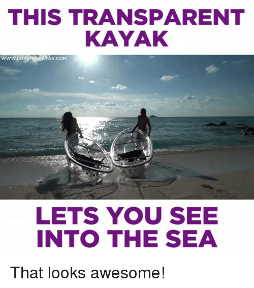 Memes, Kayak, and Transparent: THIS TRANSPARENT  KAYAK  wwwcRYSTANKAYAK co  LETS YOU SEE  INTO THE SEA That looks awesome!