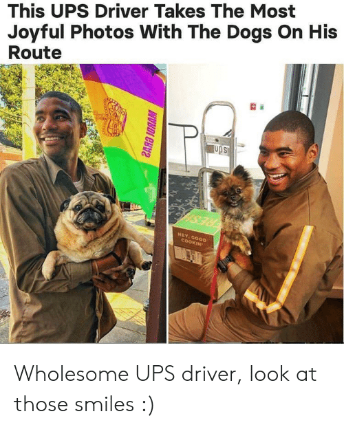 Joyful: This UPS Driver Takes The Most  Joyful Photos With The Dogs On His  Route  ups  HEY, Goo  OKIN Wholesome UPS driver, look at those smiles :)
