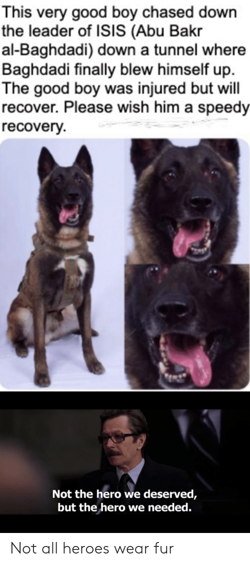 abu: This very good boy chased down  the leader of ISIS (Abu Bakr  al-Baghdadi) down a tunnel where  Baghdadi finally blew himself up  The good boy was injured but will  recover. Please wish him a speedy  recovery  Not the hero we deserved,  but the hero we needed. Not all heroes wear fur