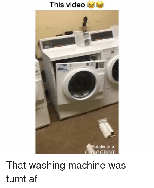 Af, Funny, and Getting Turnt: This video  atolentino1 That washing machine was turnt af