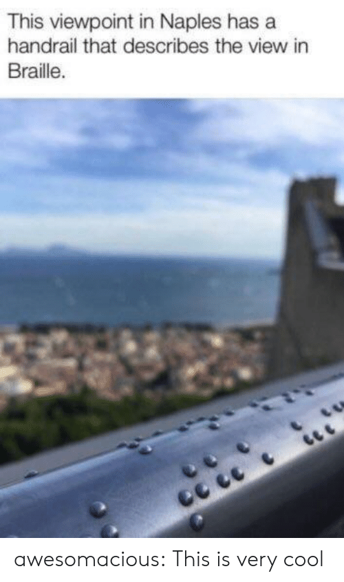 Tumblr, Blog, and Cool: This viewpoint in Naples has a  handrail that describes the view in  Braille. awesomacious:  This is very cool