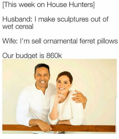 Budget, Ferret, and House: This week on House Hunters]  Husband: I make sculptures out of  wet cereal  Wife: I'm sell ornamental ferret pillows  Our budget is 860k