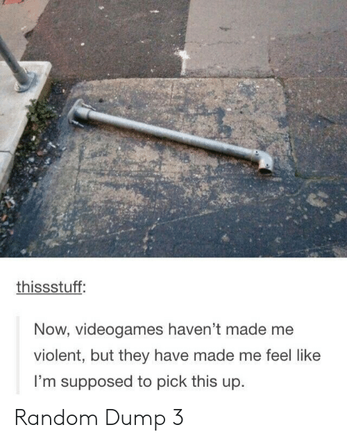 Violent, Random, and They: thissstuff:  Now, videogames haven't made me  violent, but they have made me feel like  I'm supposed to pick this up. Random Dump 3