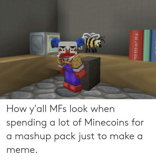 Meme, Mashup, and How: THIVIHIL How y'all MFs look when spending a lot of Minecoins for a mashup pack just to make a meme.