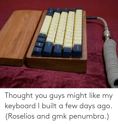 a-few-days: Thought you guys might like my keyboard I built a few days ago. (Roselios and gmk penumbra.)