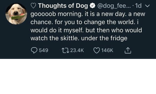 skittle: Thoughts of Dog @dog fee... 1d  gooooob morning. it is a new day. a new  chance. for you to change the world. i  would do it myself. but then who would  watch the skittle. under the fridge  549 tJ23.4K 146K