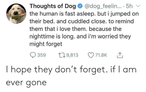 Love, Hope, and Jumped: Thoughts of Dog @dog feelin..5h  the human is fast asleep. but i jumped on  their bed. and cuddled close. to remind  them that i love them. because the  nighttime is long. and i'm worried they  might forget  71.8K I hope they don't forget. if I am ever gone