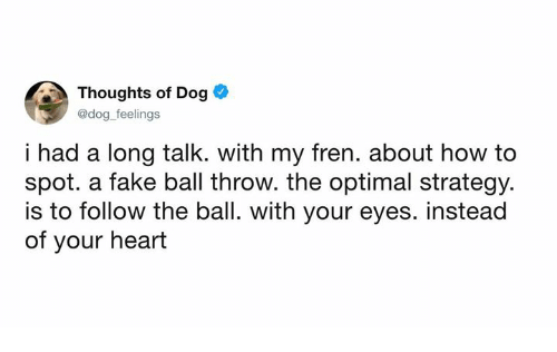 optimal: Thoughts of Dog  @dog feelings  i had a long talk. with my fren. about how to  spot. a fake ball throw. the optimal strategy.  is to follow the ball. with your eyes. instead  of your heart