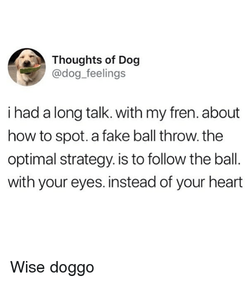 optimal: Thoughts of Dog  @dog_feelings  i had a long talk. with my fren. about  how to spot. a fake ball throw. the  optimal strategy. is to follow the ball.  with your eyes. instead of your heart Wise doggo