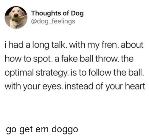 optimal: Thoughts of Dog  @dog_feelings  i had a long talk. with my fren. about  how to spot. a fake ball throw. the  optimal strategy. is to follow the ball.  with your eyes. instead of your heart <p>go get em doggo</p>