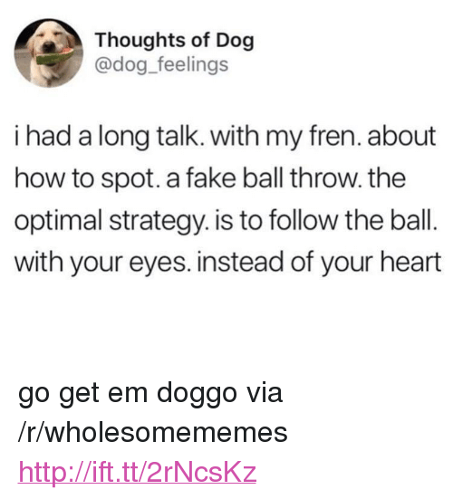 """optimal: Thoughts of Dog  @dog_feelings  i had a long talk. with my fren. about  how to spot. a fake ball throw. the  optimal strategy. is to follow the ball.  with your eyes. instead of your heart <p>go get em doggo via /r/wholesomememes <a href=""""http://ift.tt/2rNcsKz"""">http://ift.tt/2rNcsKz</a></p>"""