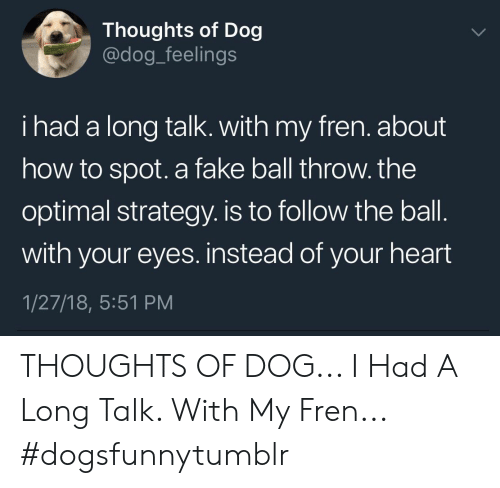 strategy: Thoughts of Dog  @dog_feelings  i had a long talk. with my fren. about  how to spot. a fake ball throw. the  optimal strategy. is to follow the ball  with your eyes. instead of your heart  1/27/18, 5:51 PM THOUGHTS OF DOG... I Had A Long Talk. With My Fren... #dogsfunnytumblr