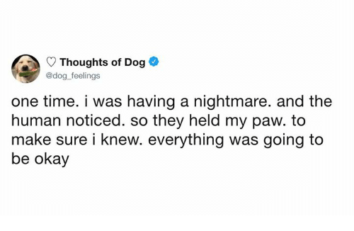 Dank, Okay, and Time: Thoughts of Dog  @dog feelings  one time. i was having a nightmare. and the  human noticed. so they held my paw. to  make sure i knew. everything was going to  be okay