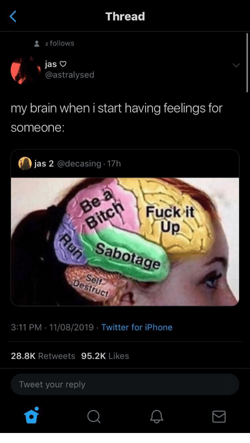 Bitch, Iphone, and Run: Thread  s follows  jas  @astralysed  my brain when i start having feelings for  someone:  jas 2 @decasing 17h  Be a  Fuck it  Up  Bitch  Sabotage  Self  Destruct  3:11 PM 11/08/2019 Twitter for iPhone  28.8K Retweets 95.2K Likes  Tweet your reply  Run