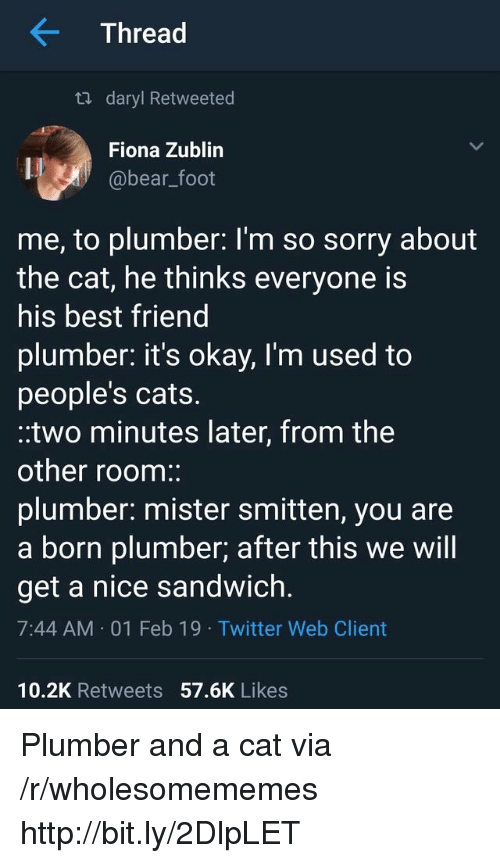 daryl: Thread  ta daryl Retweeted  Fiona Zublin  @bear_foot  me, to plumber: l'm so sorry about  the cat, he thinks everyone is  his best friend  plumber. it's okay, I'm used to  people's cats.  .two minutes later, from the  other room:  plumber: mister smitten, you are  a born plumber; after this we will  get a nice sandwich.  7:44 AM 01 Feb 19 Twitter Web Client  10.2K Retweets 57.6K Likes Plumber and a cat via /r/wholesomememes http://bit.ly/2DlpLET