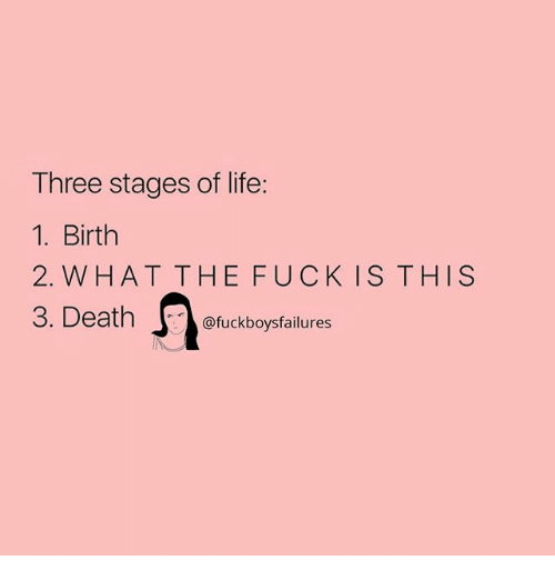 Life, Fuck, and Girl Memes: Three stages of life:  1. Birth  2. W HAT THE FUCK IS THIS  @fuckboysfailures