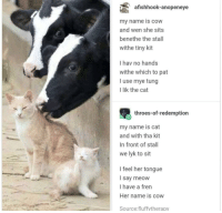 My Name Is Cow