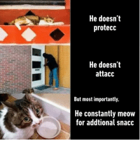 But Most Importantly He