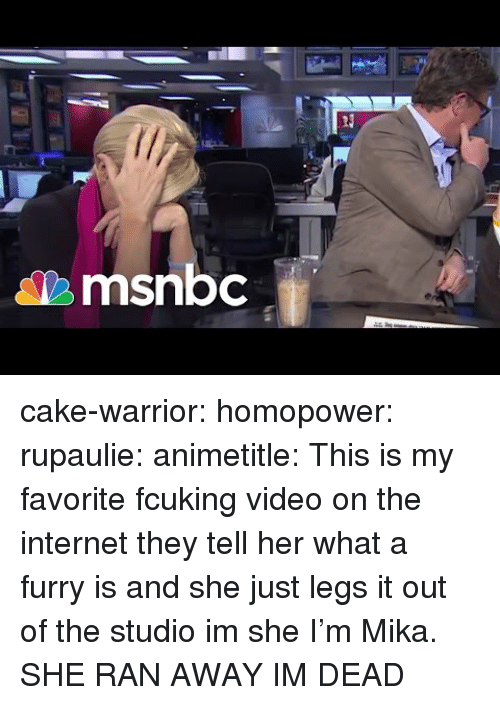 Internet, Tumblr, and Blog: Ti  msnbc cake-warrior:  homopower:  rupaulie:   animetitle: This is my favorite fcuking video on the internet they tell her what a furry is and she just legs it out of the studio im she   I'm Mika.  SHE RAN AWAY IM DEAD