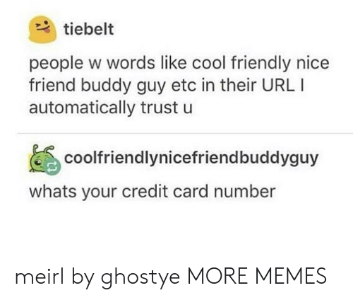 buddy guy: tiebelt  people w words like cool friendly nice  friend buddy guy etc in their URL I  automatically trust u  coolfriendlynicefriendbuddyguy  whats your credit card number meirl by ghostye MORE MEMES
