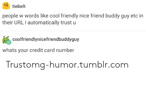 buddy guy: tiebelt  people w words like cool friendly nice friend buddy guy etc in  their URL I automatically trust u  coolfriendlynicefriendbuddyguy  whats your credit card number Trustomg-humor.tumblr.com