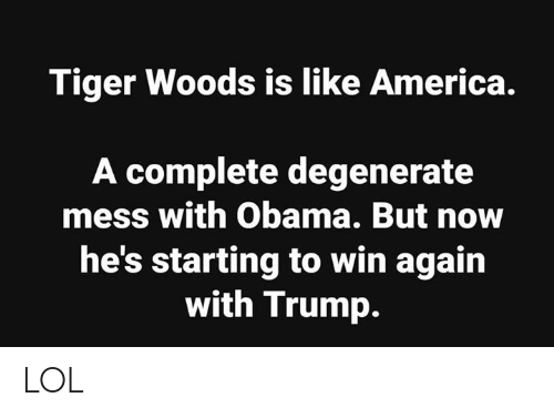 America, Lol, and Memes: Tiger Woods is like America.  A complete degenerate  mess with Obama. But now  he's starting to win again  with Trump. LOL