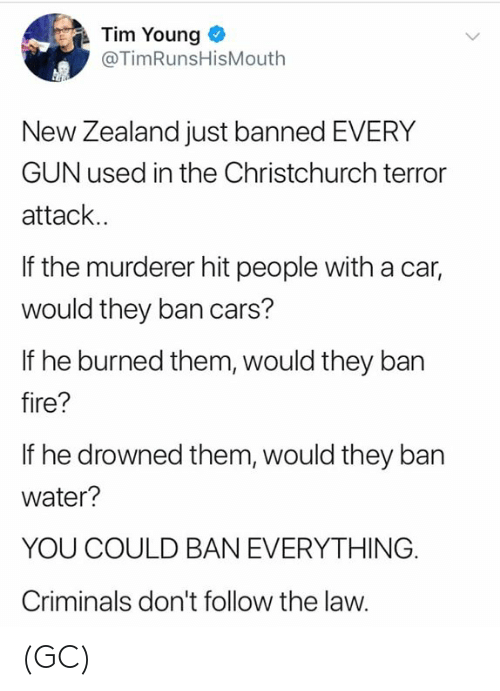 Cars, Fire, and Memes: Tim Young  @TimRunsHisMouth  New Zealand just banned EVERY  GUN used in the Christchurch terror  attack..  If the murderer hit people with a car,  would they ban cars?  If he burned them, would they ban  fire?  If he drowned them, would they ban  water?  YOU COULD BAN EVERYTHING.  Criminals don't follow the law. (GC)