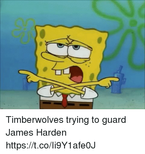 timberwolves: Timberwolves trying to guard James Harden https://t.co/Ii9Y1afe0J