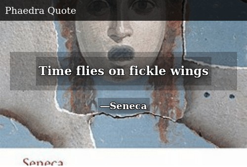 Time, Wings, and Fickle: Time flies on fickle wings