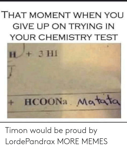 Proud: Timon would be proud by LordePandrax MORE MEMES