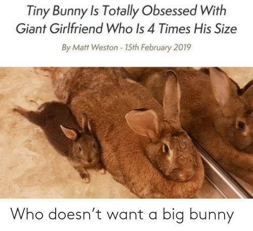 bunny: Tiny Bunny Is Totally Obsessed With  Giant Girlfriend Who Is 4 Times His Size  By Matt Weston - 15th February 2019 Who doesn't want a big bunny