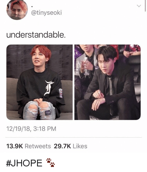 Likes, Understandable, and Jhope: @tinyseoki  understandable.  12/19/18, 3:18 PM  13.9K Retweets 29.7K Likes #JHOPE 🐾
