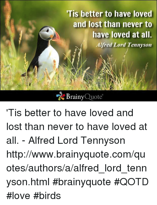 """love birds: 'Tis better to have loved  and lost than never to  have loved at all  Alfred Lord Tennyson  """"N Brainy  Quote 'Tis better to have loved and lost than never to have loved at all. - Alfred Lord Tennyson http://www.brainyquote.com/quotes/authors/a/alfred_lord_tennyson.html #brainyquote #QOTD #love #birds"""