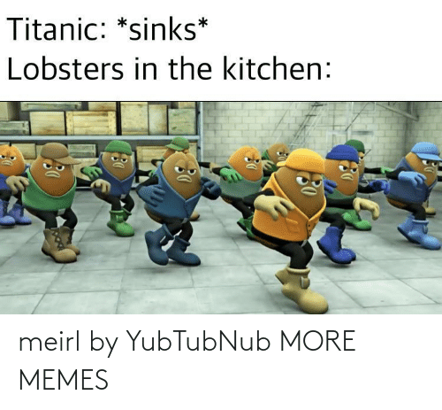 kitchen: Titanic: *sinks*  Lobsters in the kitchen: meirl by YubTubNub MORE MEMES