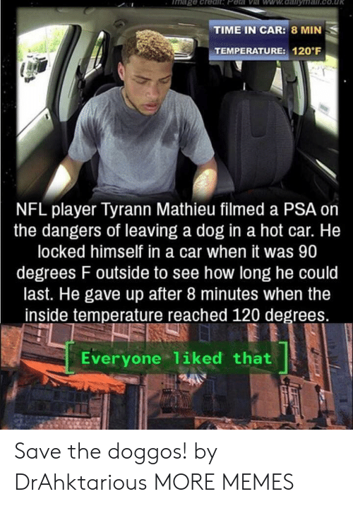 Dank, Memes, and Nfl: Tmage .credit Peta Ve ww.dalilyma  TIME IN CAR: 8 MIN  TEMPERATURE: 120 F  NFL player Tyrann Mathieu filmed a PSA on  the dangers of leaving a dog in a hot car. He  locked himself in a car when it was 90  degrees F outside to see how long he could  last. He gave up after 8 minutes when the  inside temperature reached 120 degrees.  Everyone 1iked that Save the doggos! by DrAhktarious MORE MEMES