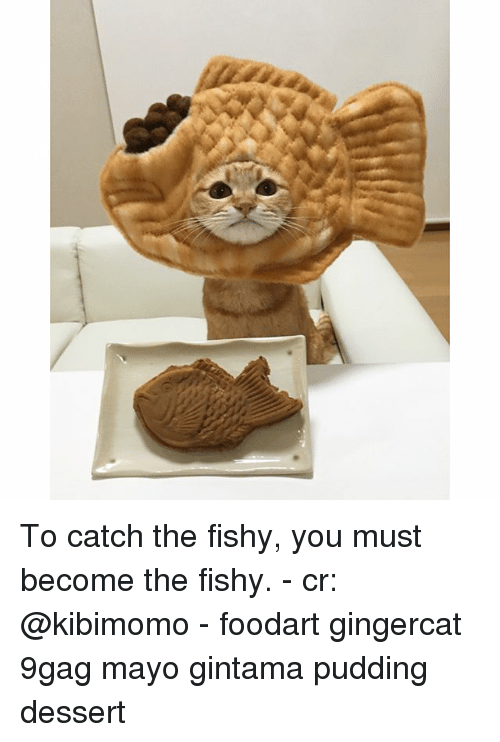 9gag, Memes, and Dessert: To catch the fishy, you must become the fishy. - cr: @kibimomo - foodart gingercat 9gag mayo gintama pudding dessert