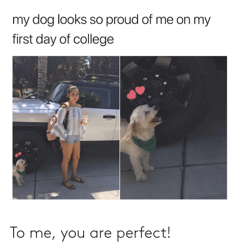 To Me: To me, you are perfect!